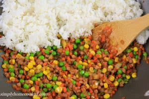 Fried rice edited-11