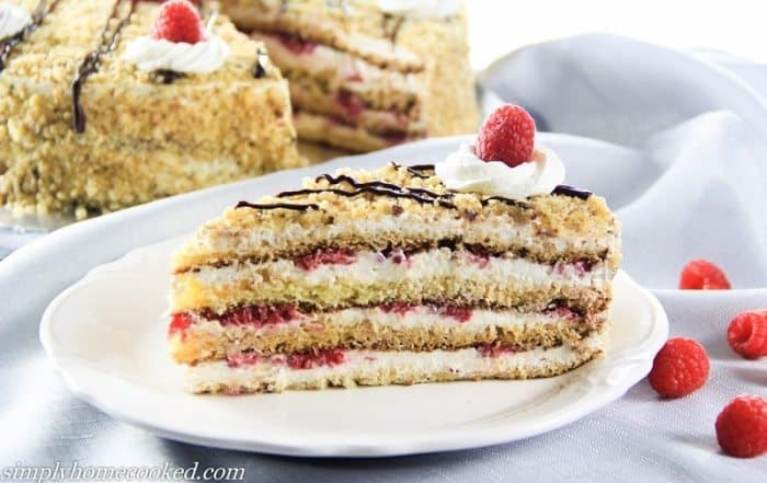 layered raspberry cake edited-30