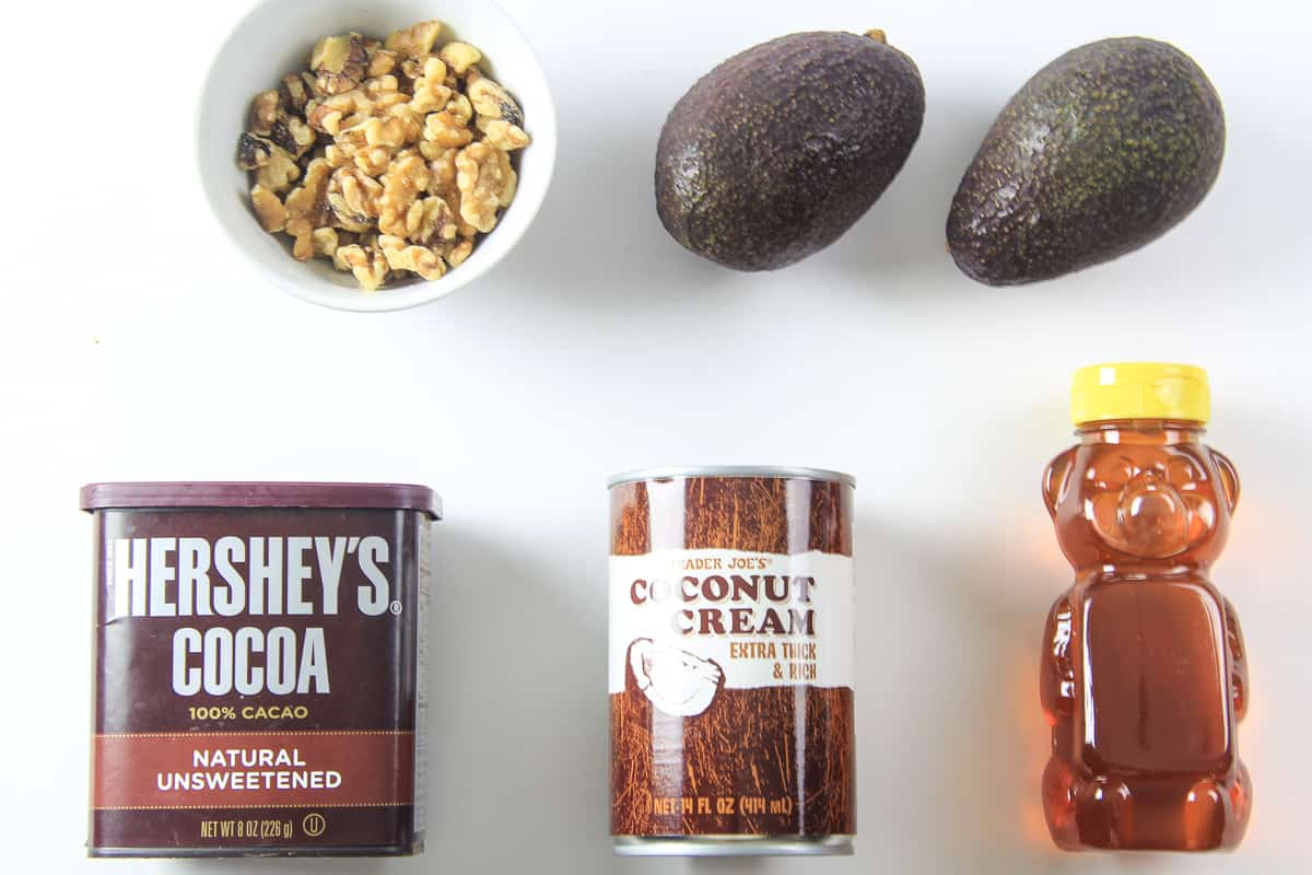 Ingredients for Paleo Chocolate Pudding laying on a flat white surface