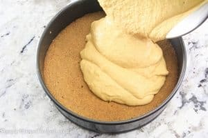 Pumpkin Cheese Cake-18