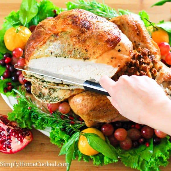 thanksgiving turkey-86