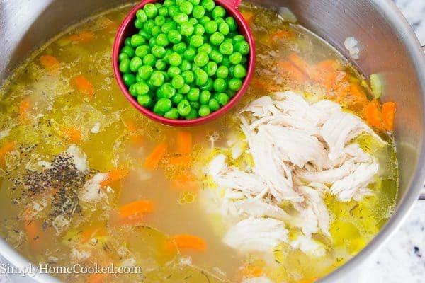 Chicken Noodle Soup-11