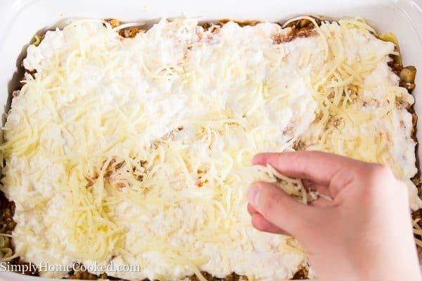 Lasagna-17