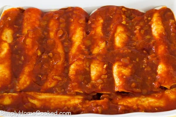Enchiladas with red sauce_-14