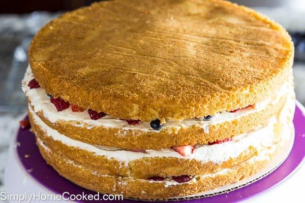 Berry Cake-26