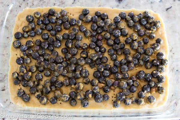 Blueberry Oatmeal Bars-10