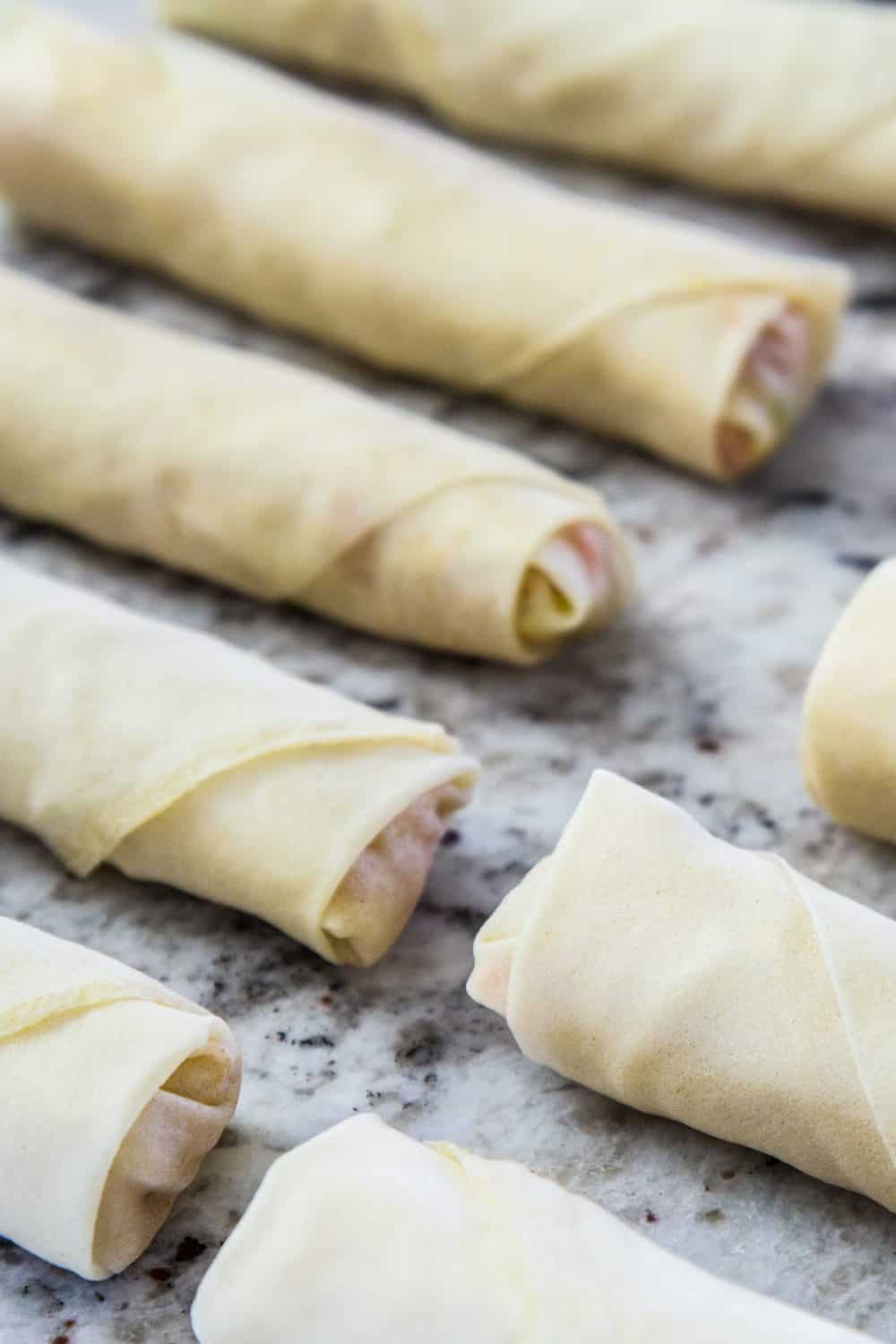 uncooked spring rolls