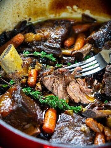 braised beef short ribs in a red dutch oven pot