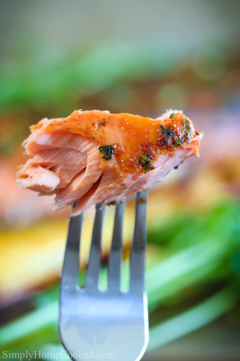 close up picture of a fork holding a small piece of cooked honey soy cedar plank salmon with a few pieces of chopped cilantro on top