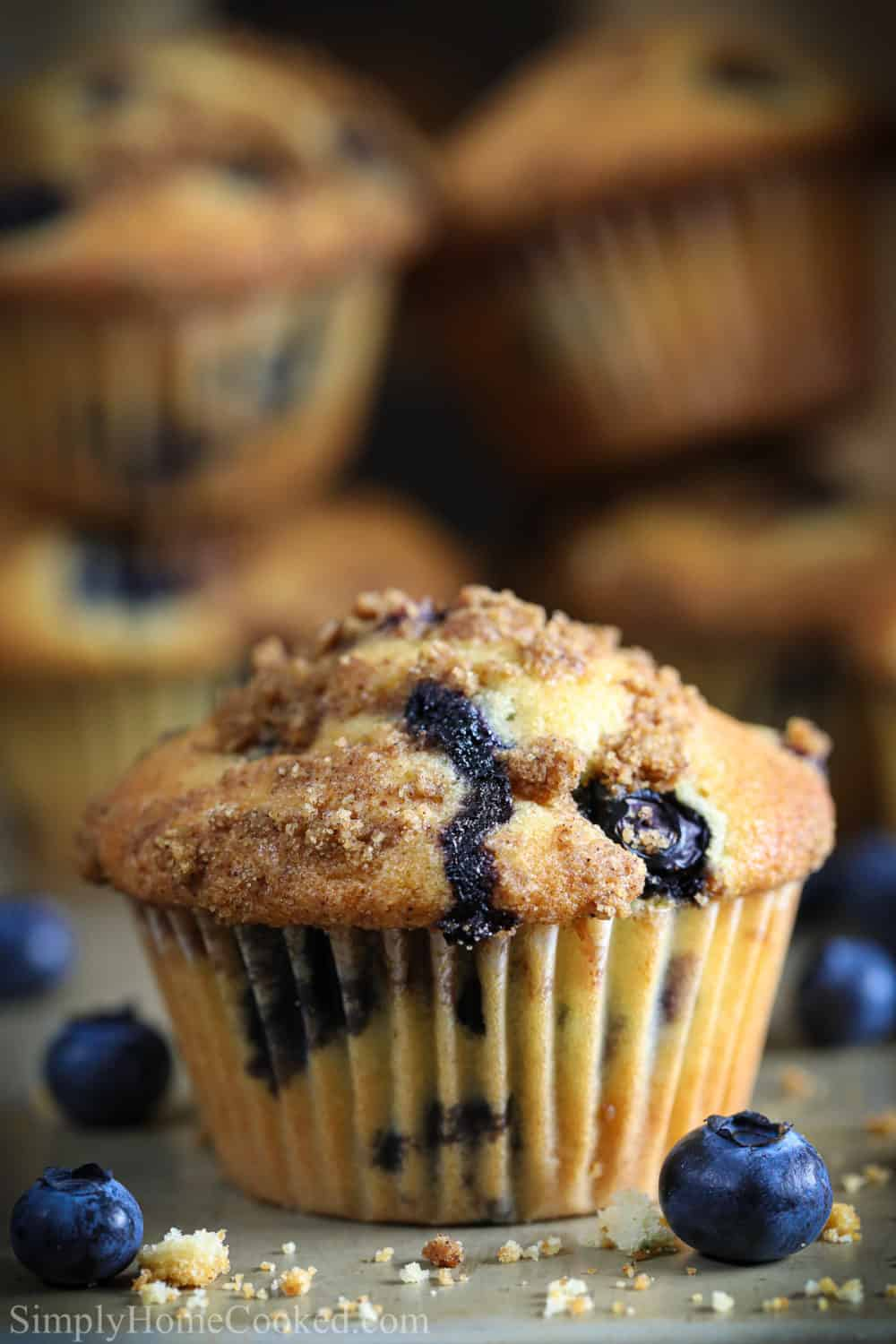front shot of blueberry muffin