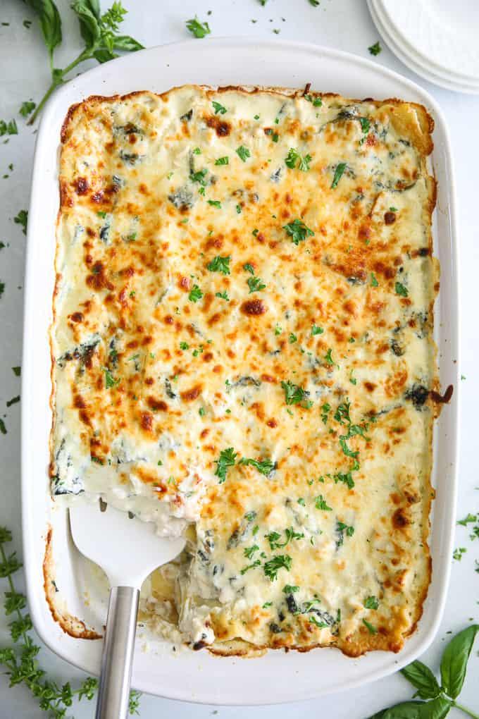 A overhead picture of a delicious chicken alfredo lasagna in a white ceramic dish.
