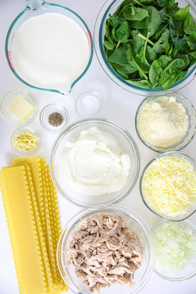 a picture of all the ingredients to make this easy lasagna recipe