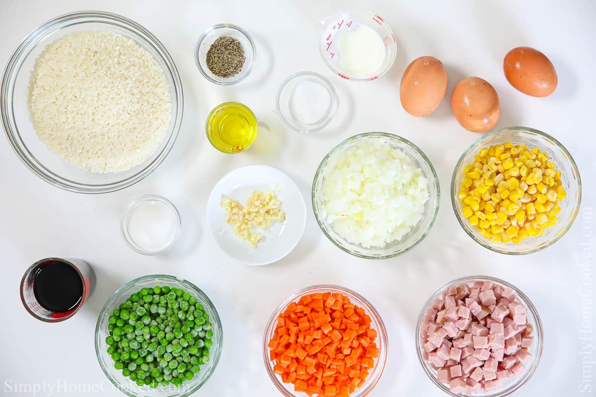 overhead photo of ingredients for pork fried on a blank white background