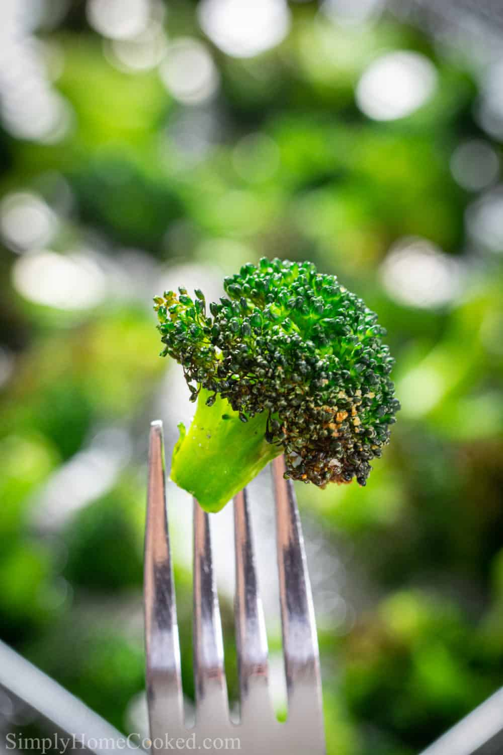 Close up of a crispy broccoli floret on a fork, with a green background.