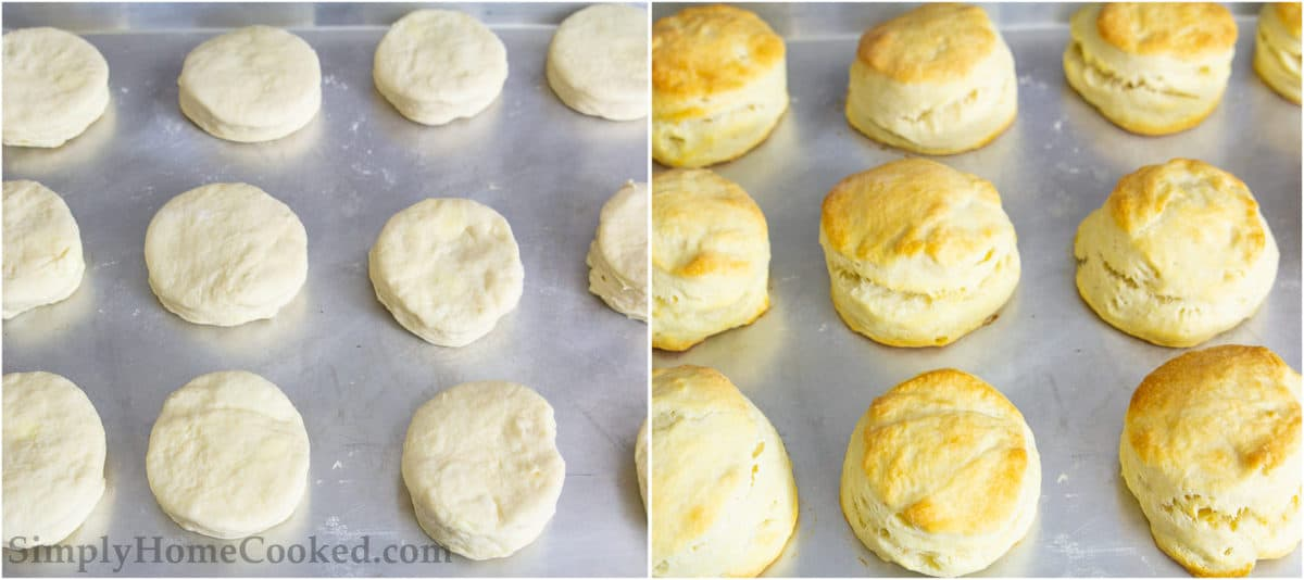 Baking sheets with uncooked buttermilk biscuits and golden brown, cooked biscuits.