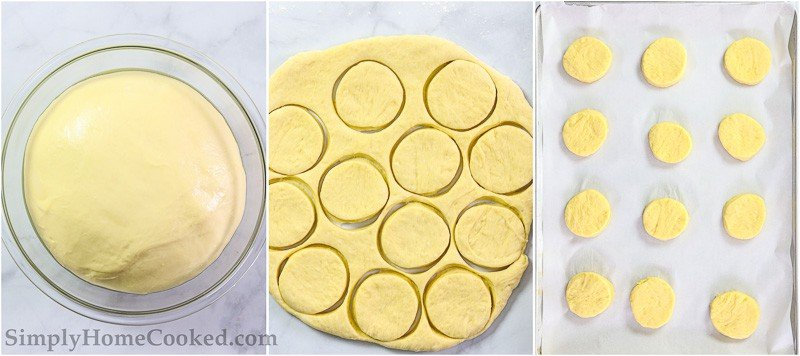 Steps to make Perfect Sugar Donuts, including letting the dough rise, cutting out the donut shapes, and letting them rise again on a parchment lined baking sheet.